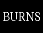 The Burns Agency